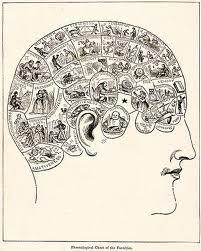 comportamiento humano