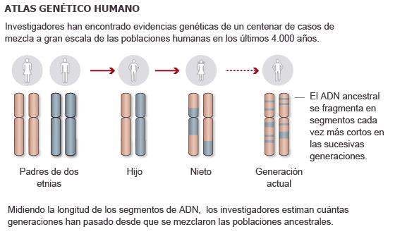 Fuente: Atlas Genético Humano (UCL, Universidad de Oxford Instituto Max Planck). / EL PAIS