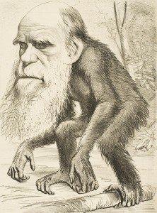 Charles Darwin da nombre a este galardón que premia la nueva evolución de la estupidez humana.