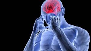 Atrás quedaron las teorías sobre la muerte de neuronas y los procesos cognitivos degenerativos. Hoy sabemos que las neuronas generan nuevas conexiones que permiten estar aprendiendo hasta el día que morimos