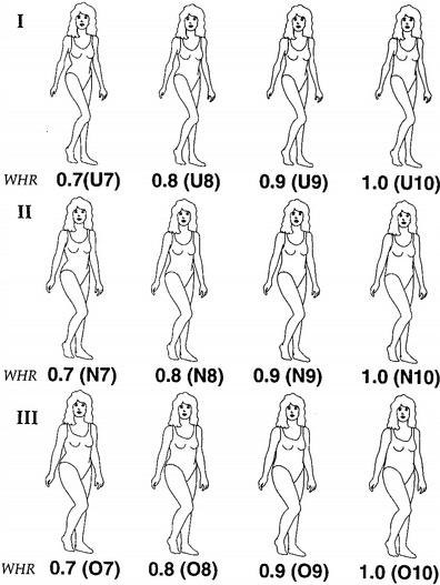 Poco importa el peso del cuerpo si la proporción del 0,7 se mantiene, pues es el modelo ideal de cuerpo femenino desde la perspectiva masculina
