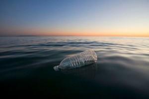 ¿Ayudará la bacteria Ideonella sakaiensis a descontaminar los mares?